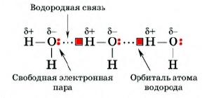 Водородная связь доклад по химии 8214
